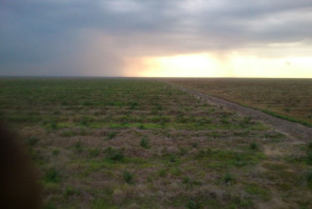 Jalan Perkebunan