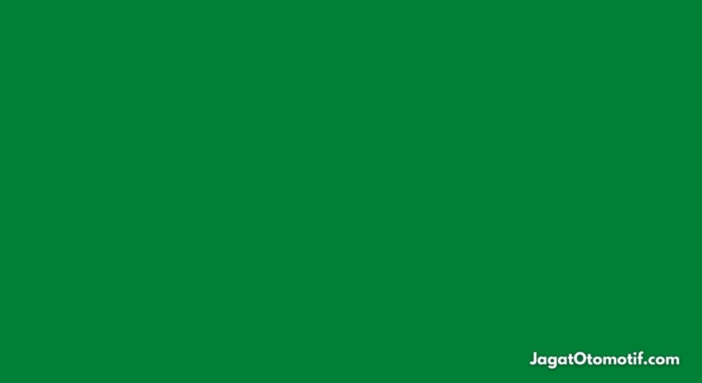 Green Flag MotoGP