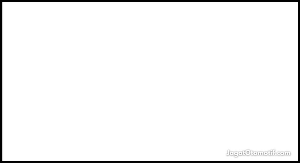 White Flag MotoGP